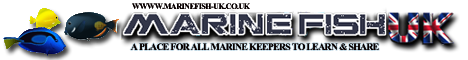 MarineFish UK Forum